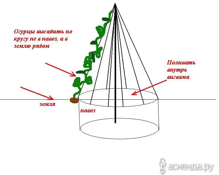 Пирамида для огурцов своими руками