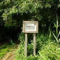 Национальный заповедник Redgrave & Lopham Fen (Восточная Англия)