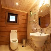 Виды теплого туалета на даче