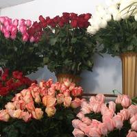 Будни работника цветочного магазина_1