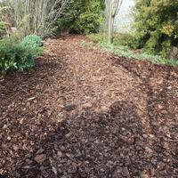 Почва как живой организм - мульча