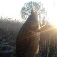 Сезон рыбалки открыт