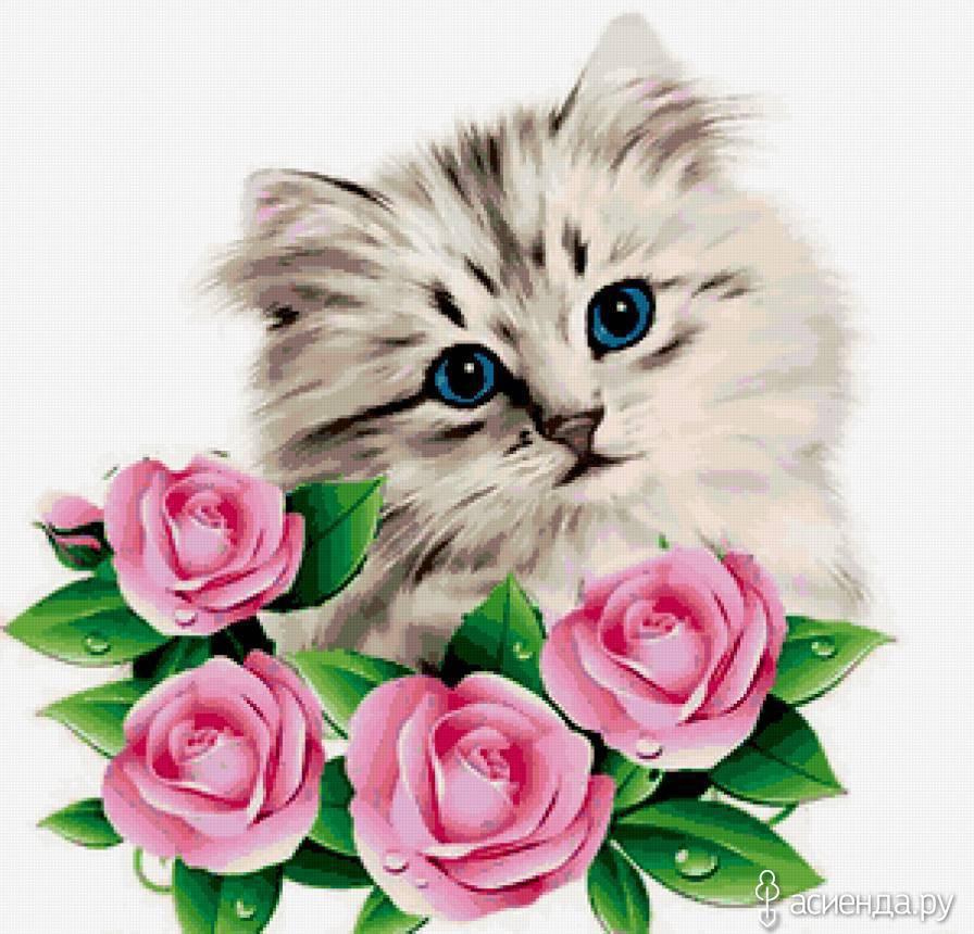 Открытки цветы для тебя с животными 894