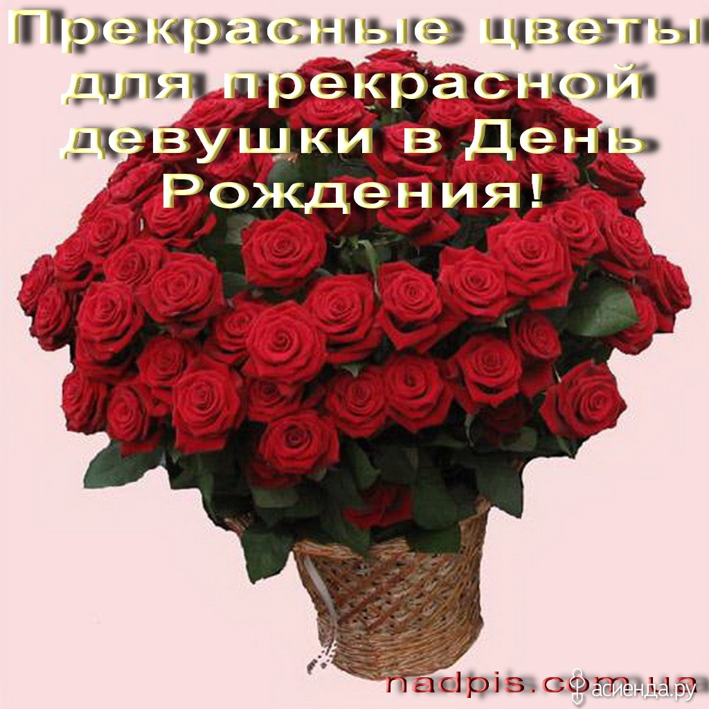 Поздравления свою девушку с днем рождения