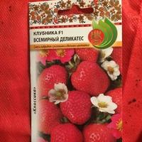 Посев на рассаду семян клубники и земляники