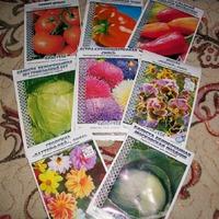 Время покупки семян