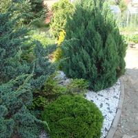 Сад для ленивых.