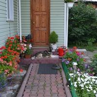 Опыт поколений для начинающих садоводов