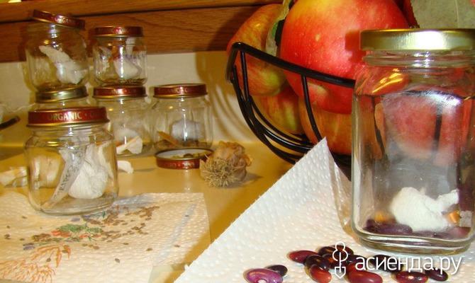 Как хранить семена в домашних условиях / Асиенда.ру