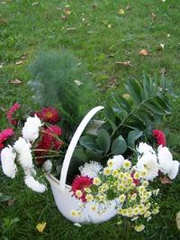 Фото для стимула.http://www.a sienda.ru/photo/albu  m/4739/
