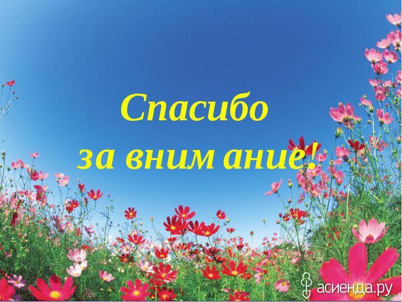 Фото спасибо за внимание цветы