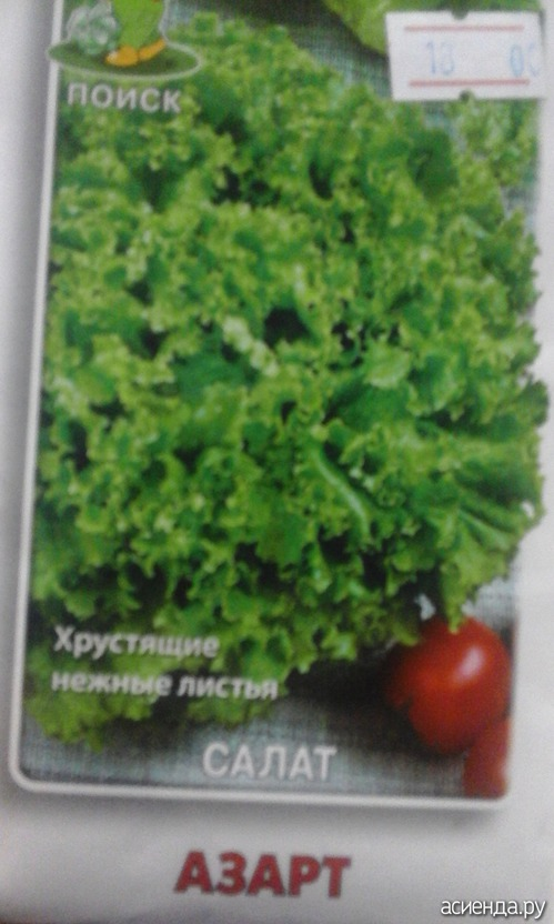 Семена салат