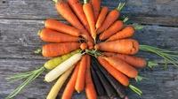 Морковка выросла, а грядки я не копала;)!!!