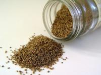 Подзимние посевы дражированными семенами
