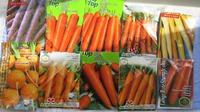 Сравниваю 10 сортов моркови!
