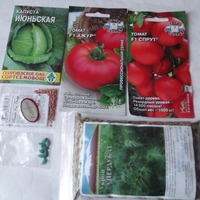 Семена овощей. Обработка, проращивание.
