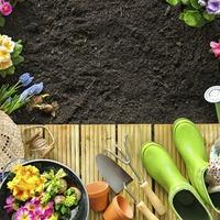 Бюджетные способы для украшения сада