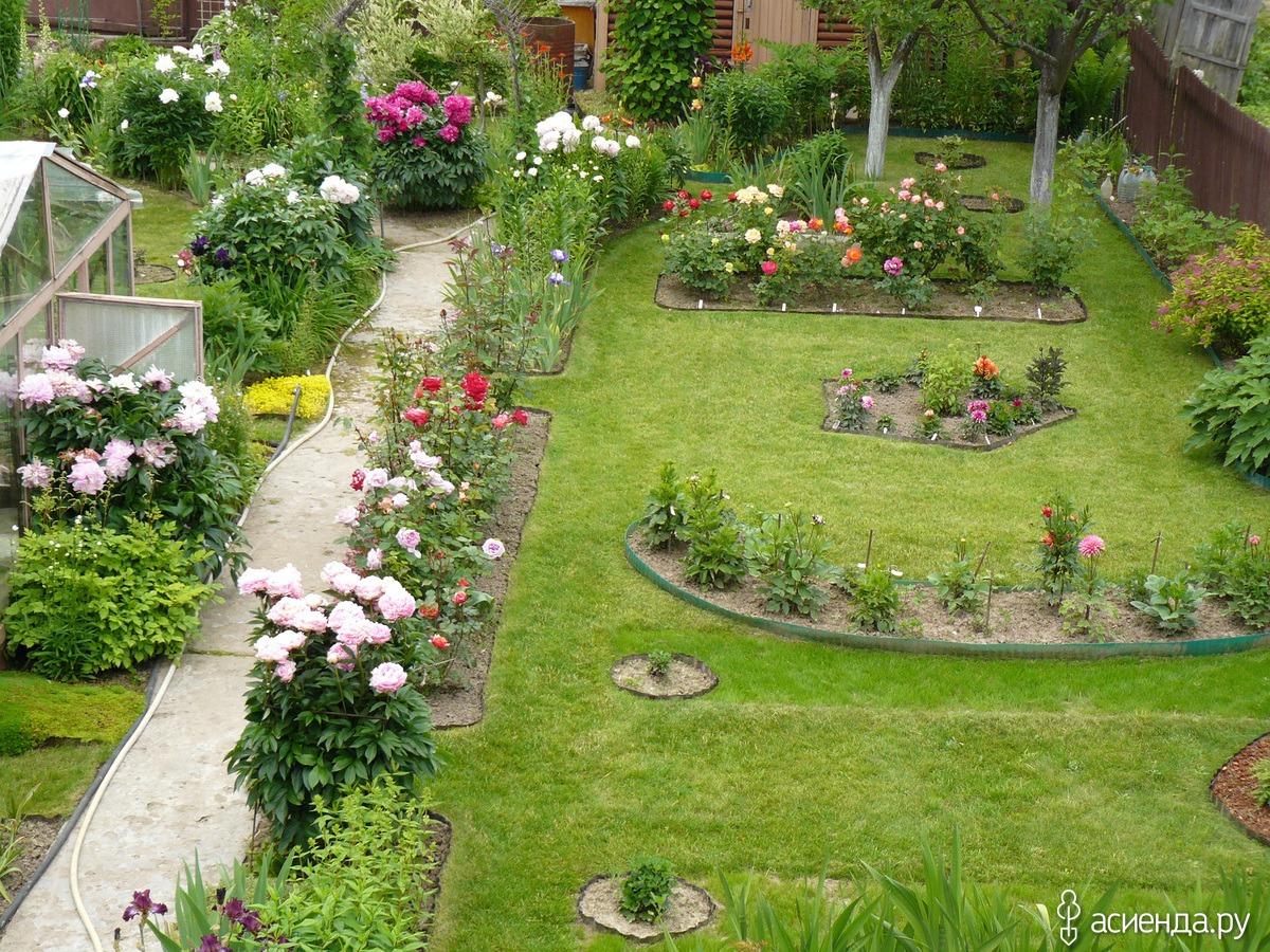 Мой любимый сад все своими руками 11