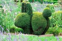 Топиар - фигурная стрижка растений