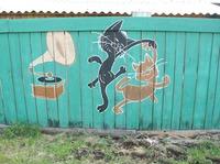 Раскрасила забор