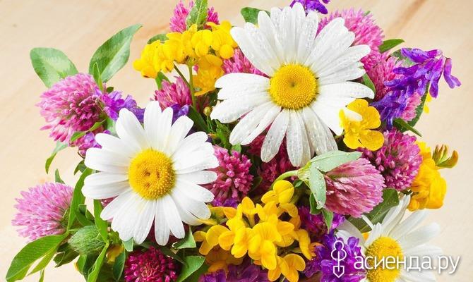 Разноцветье букета