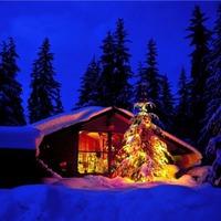 Отмечаем Новый Год на даче