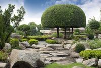 Что такое стилистика сада?