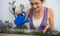 Правильный полив комнатных растений. Продолжение