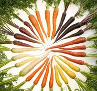 Сеем морковь с... кофе!