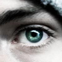 Зоркое око не дремлет (посмеяться).