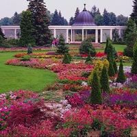 Палитра вашего сада