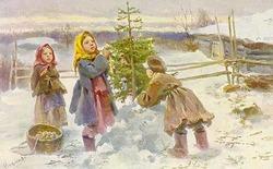 Ель во дворе и суеверия )))