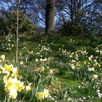 А вот и весна пришла! Все в гости к нам