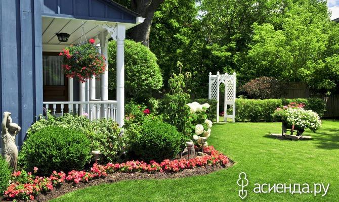 Малоуходный сад для занятых людей