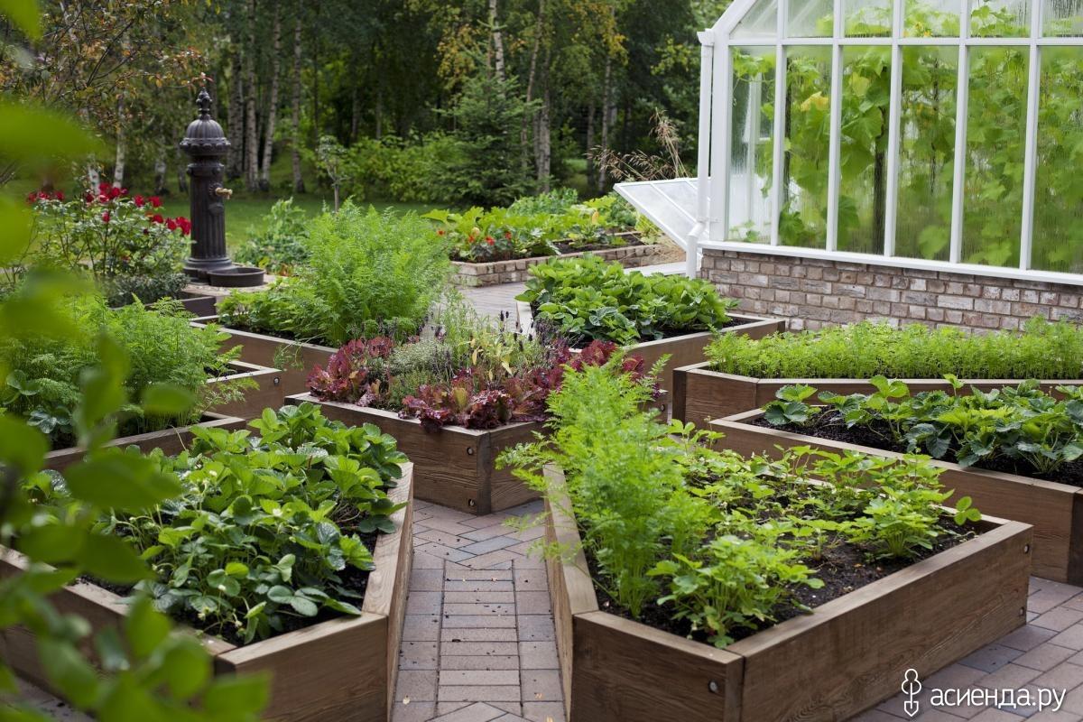 Красивый огород своими руками: фото грядок, видео.