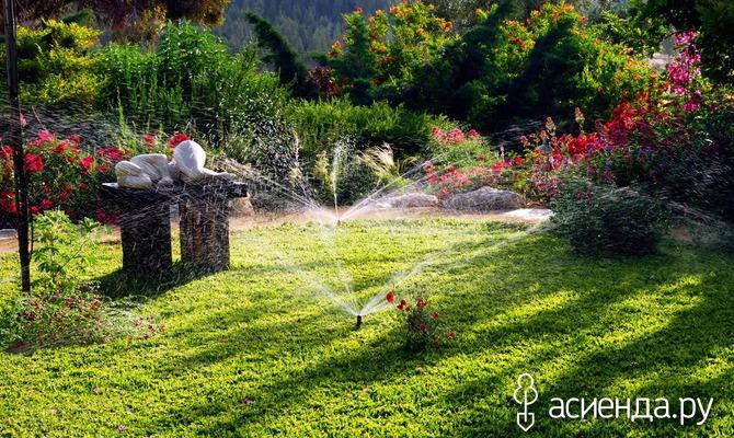 Поддержание чистоты в саду