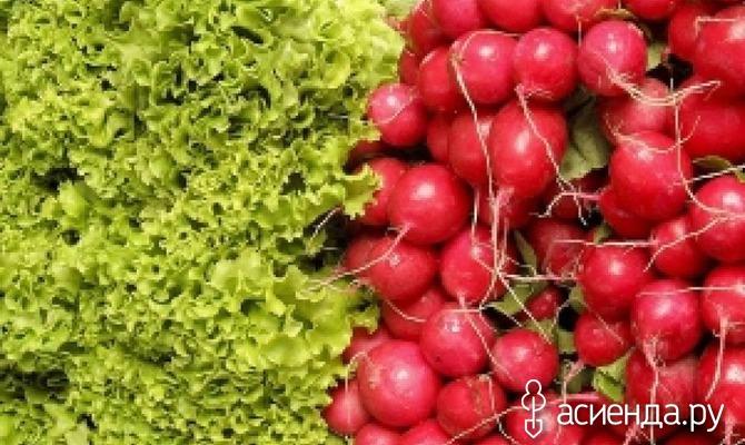 Овощные скороспелки
