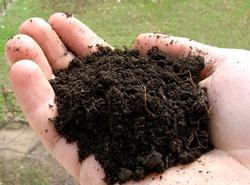Улучшение почвы и борьба с бактериями