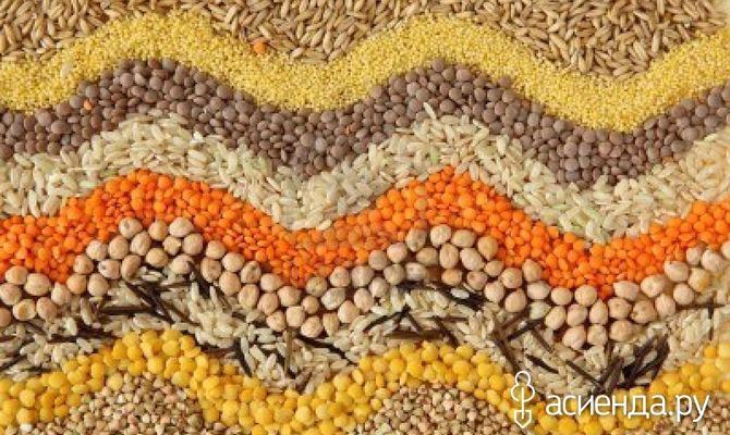 Предпосевная обработка семян. Часть 3