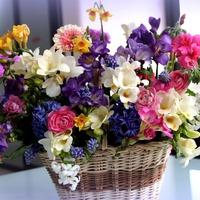 Как продлить жизнь свежесрезанным цветам. Часть 3