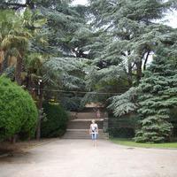 Никитский ботанический сад. Крым