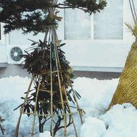 Материалы для зимнего укрытия растений. Часть 2
