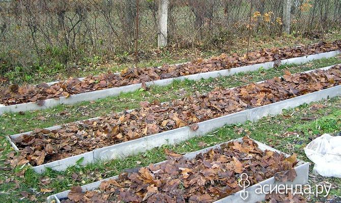 Материалы для зимнего укрытия растений. Часть 1