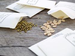 Как правильно выбирать семена. Часть 1