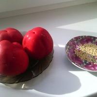Перец сорта Гогошары.