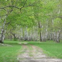 Саратовская область. Село Ягодная поляна. часть 2.
