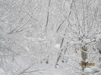 Наступила зима!!!