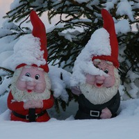 Способы снегозадержания и сохранения снега в саду