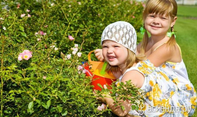 Чем занять детей на даче? Часть 1 «Общие советы»