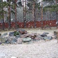 Альпийская горка в зимне-весенний период